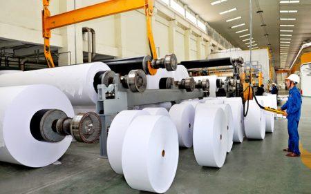 Gỗ là nguyên liệu chủ yếu để sản xuất giấy