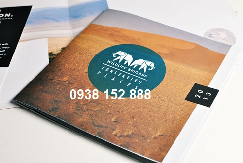 Mẫu brochure công ty dạng quyển mỏng