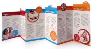 Mẫu brochure đẹp | Tổng hợp các mẫu brochure đẹp và ấn tượng