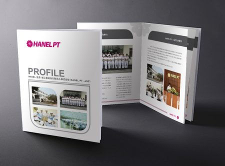 mẫu profile công ty hanel pt